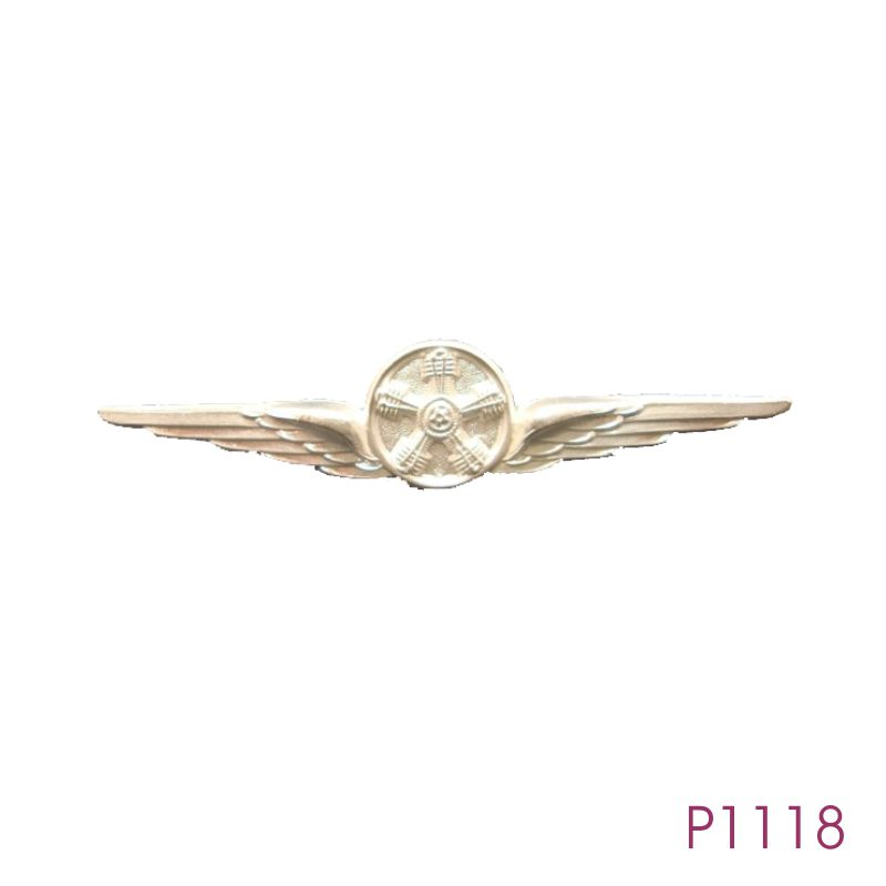 P1118.jpg