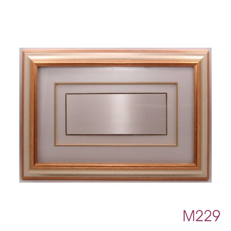 M229.jpg